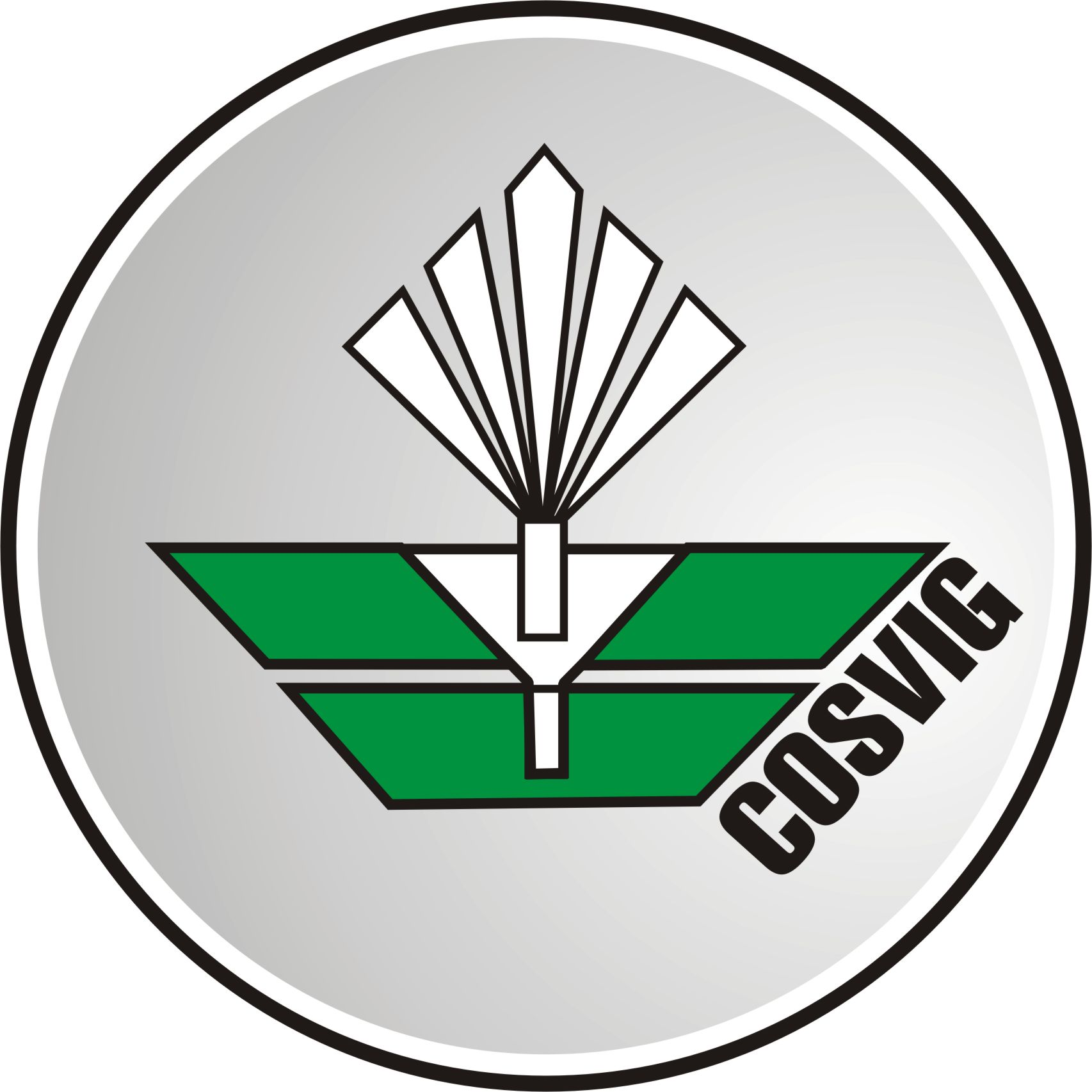 cosviglogo2012.jpg
