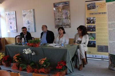 Chiacchella, Petrini, Torsello e Bramerini