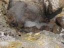 La Geotermia in Toscana: alcuni approfondimenti